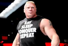 Brock Lesnar back to WWE Smackdown on 19th July
