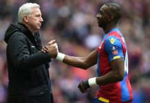 Crystal Palace 24-man squad for 2016-17